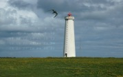 wallpaper May 2015 - lighthouse Garðskagi (IS)